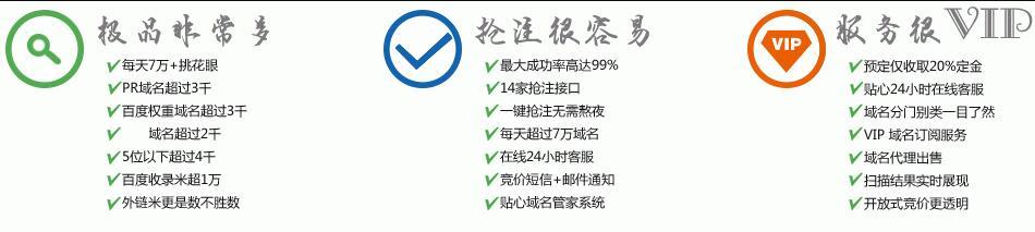 西风咖过期域名抢注工具平台